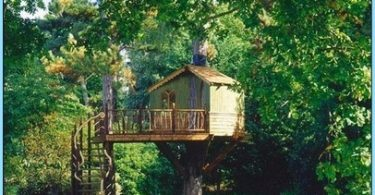 Come fare una serra tetto con le mani foto - Come costruire una casa sull albero ...