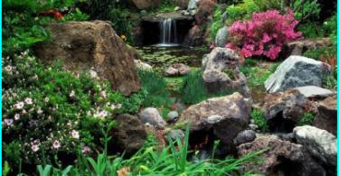 Cascata con le mani nel paese e in giardino - Soluzione