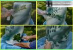 """Come fare un letto di verdure e le erbe: creare """"appetitoso"""" un mini-giardino"""