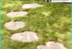 Bassa crescita fiori del giardino: una selezione delle migliori varietà per le aiuole