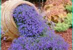 Protezione del legno contro umidità, incendi, insetti e marciume: Panoramica