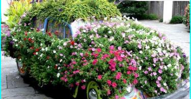 Come scegliere una motosega per la casa e il giardino - che è meglio e perché?