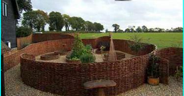 Come scegliere un giardino hedge trimmer per siepi: benzina o elettrica?