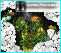 Allevamento di pesci in stagni artificiali - le caratteristiche e le sfumature